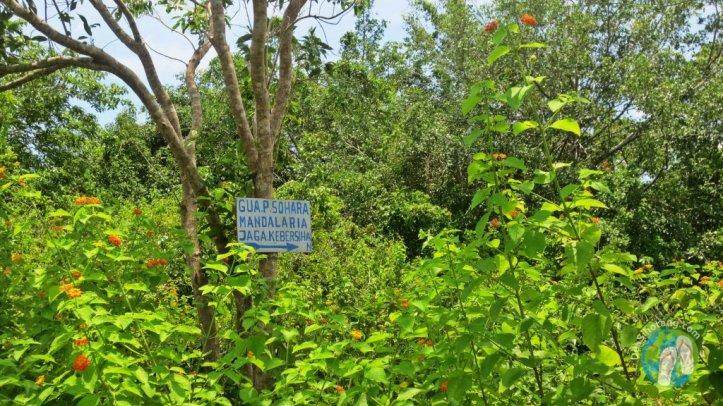 Tanjung-Bira-Dea-Sihotang (8)