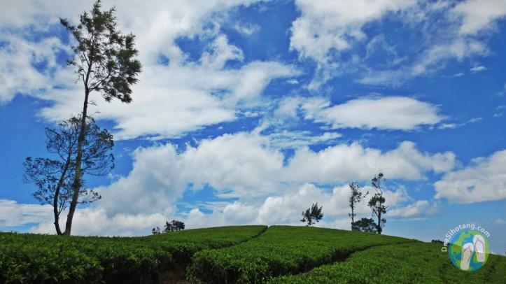 Heritance-Srilanka-Dea-Sihotang (21)