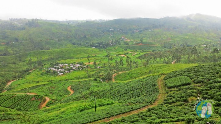 on-the-way-to-nuwara-eliya7
