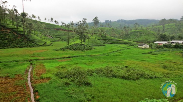 on-the-way-to-nuwara-eliya8