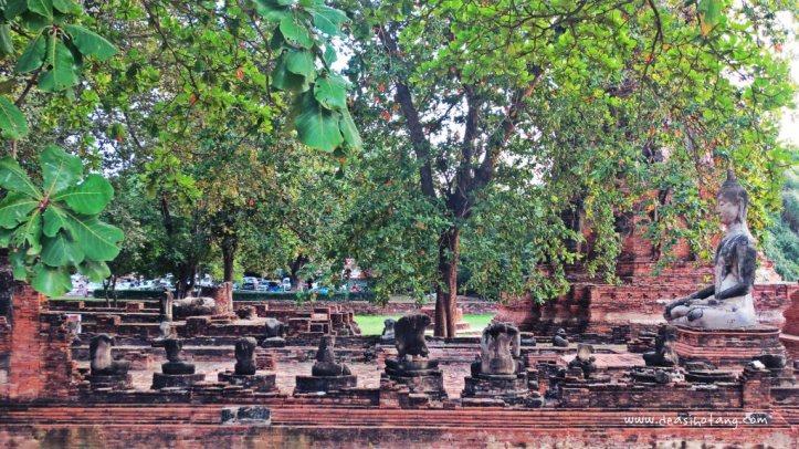 014-Ayutthaya, the incredible old kingdom (Part 2)-DeaSihotang