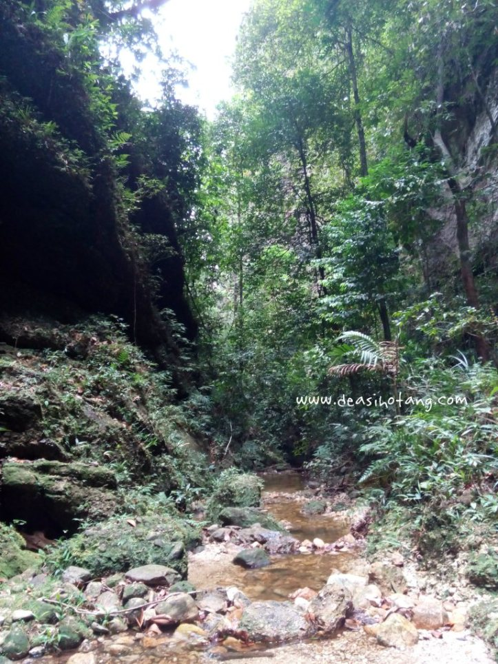 Harau-Valley-Dea-Sihotang (29)