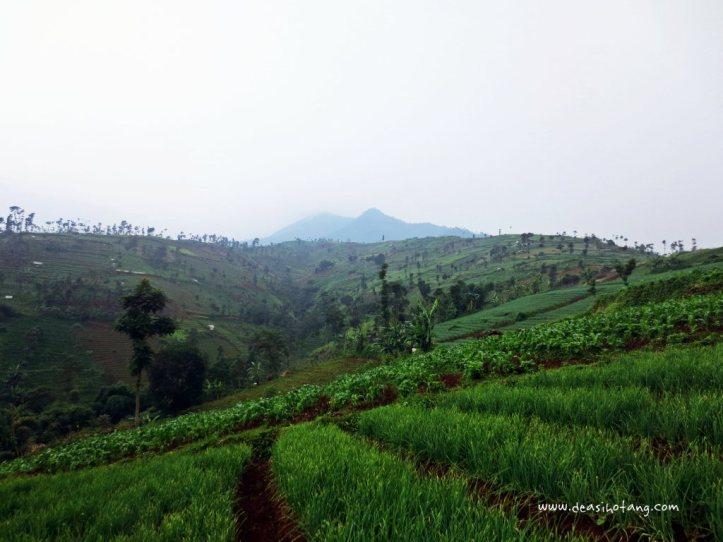 Mountain-Day-Dea-Sihotang (3)