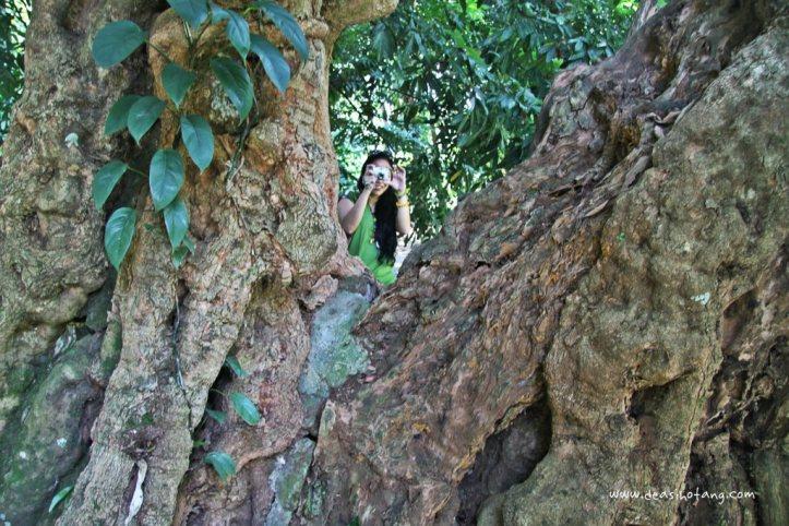 012-Bogor Botanical Gardens (Kebun Raya Bogor)-DeaSihotang