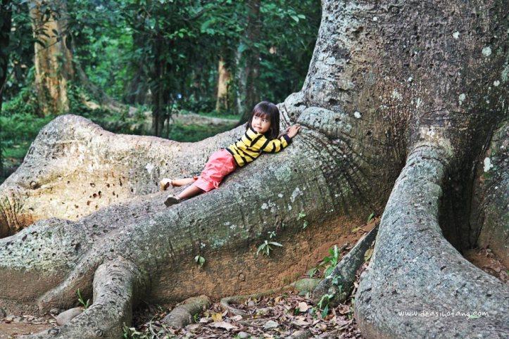 016-Bogor Botanical Gardens (Kebun Raya Bogor)-DeaSihotang