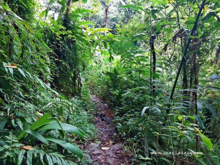 Fun-Camping-Situgunung-Dea-Sihotang (13)