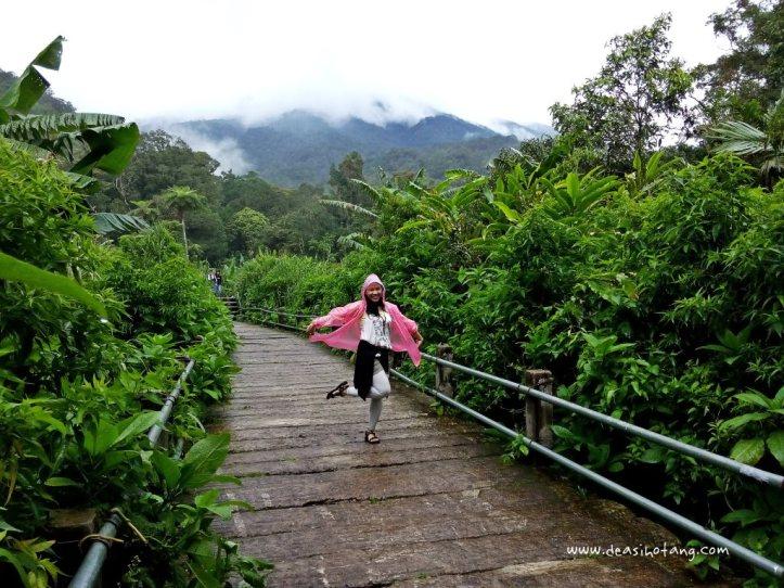 Cibeureum-Waterfalls-West-Java (10)