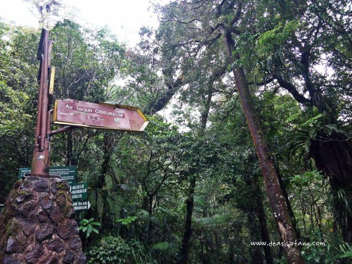 Cibeureum-Waterfalls-West-Java (11)