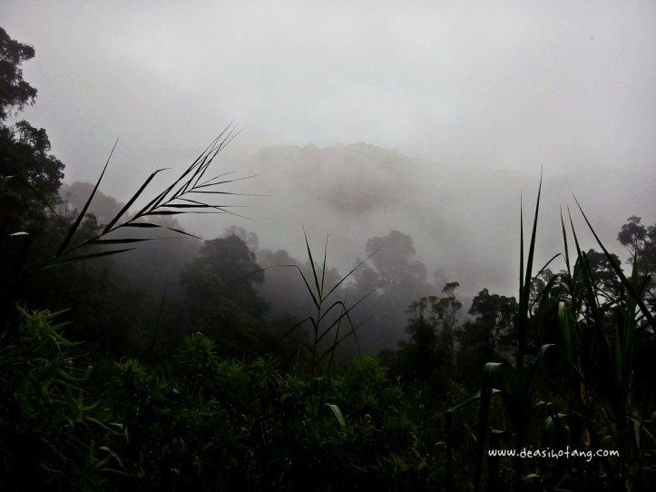 Cibeureum-Waterfalls-West-Java (15)