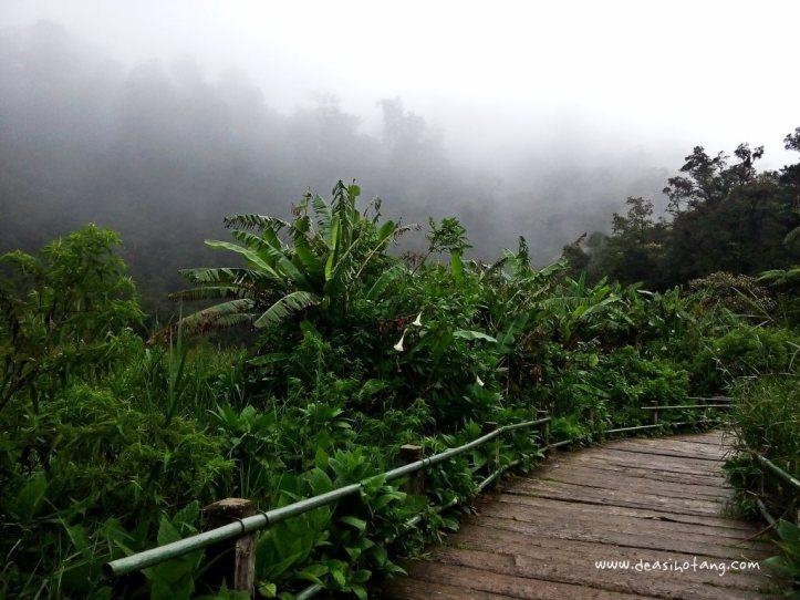 Cibeureum-Waterfalls-West-Java (16)