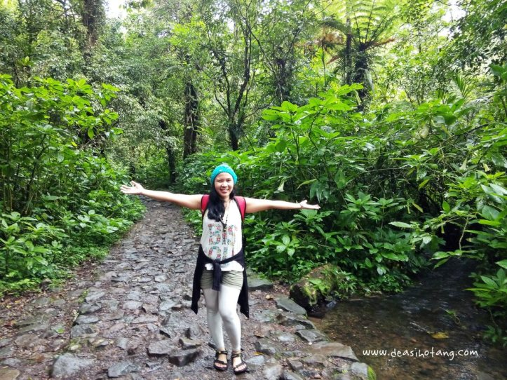 Cibeureum-Waterfalls-West-Java (6)