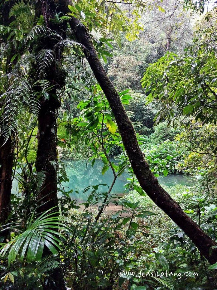 Cibeureum-Waterfalls-West-Java (7)