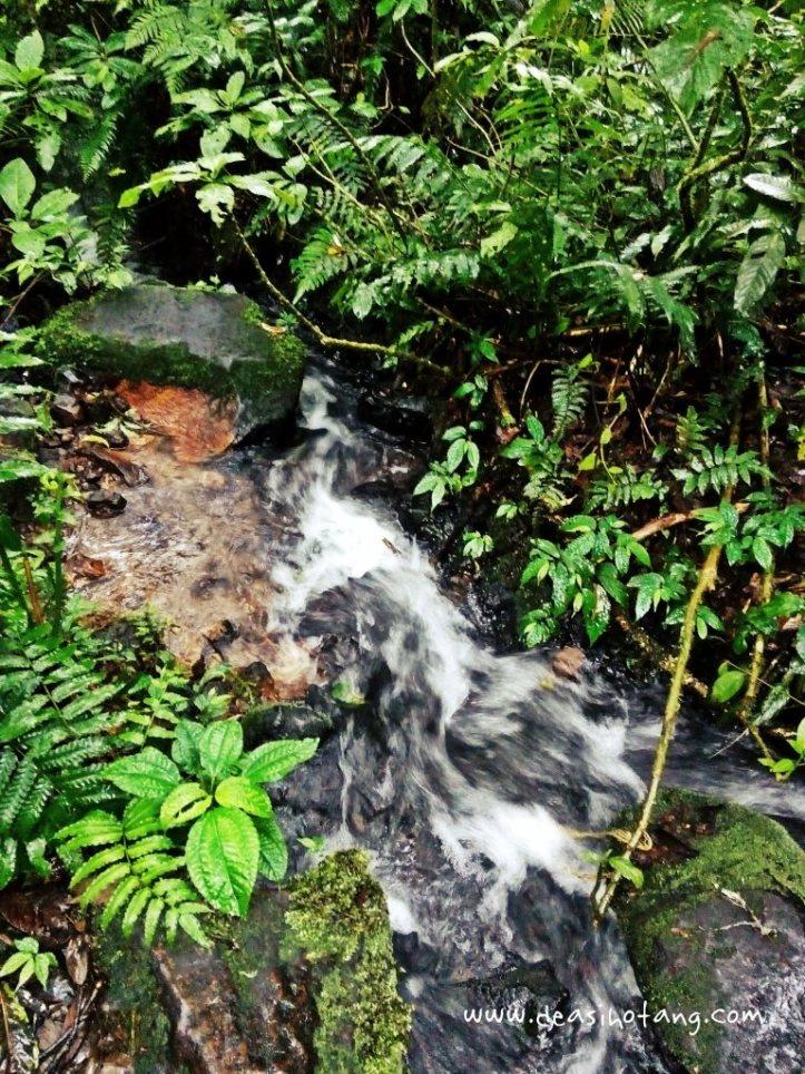 Cibeureum-Waterfalls-West-Java (9)