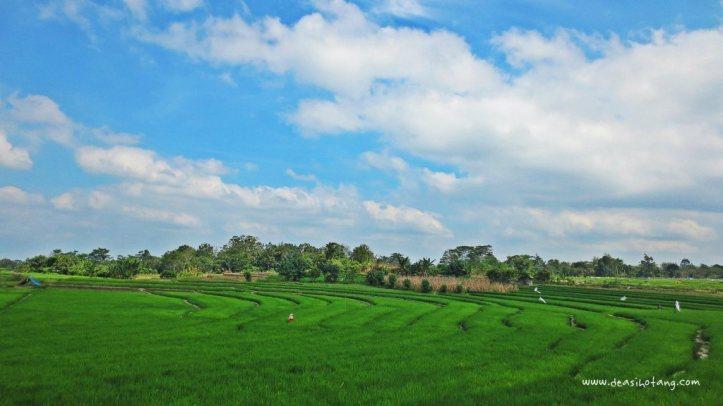 Lake-Toba-Dea-Sihotang (3)
