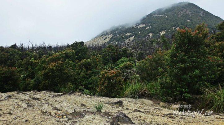 papandayan-volcano-031