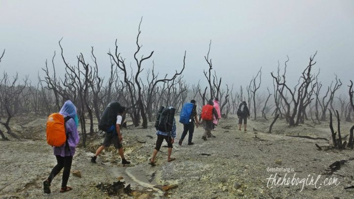 papandayan-volcano-033