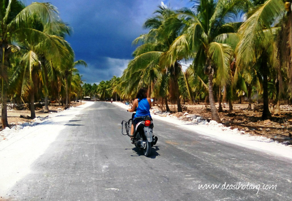 Rote >> 5 Things You Have To Know Before Visiting Rote Island Indonesia