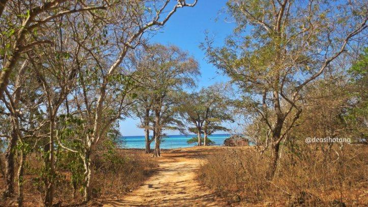 The-Memorable-Charm-of-Semau-Island-NTT (12)