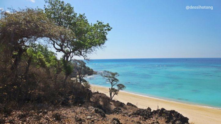 The-Memorable-Charm-of-Semau-Island-NTT (13)