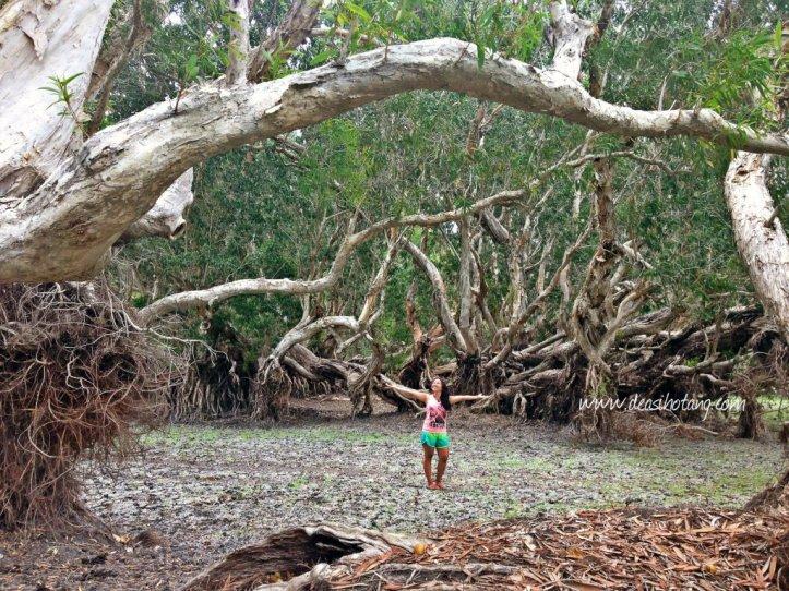 Hal-Kecil-Membuatku-Cinta-Pulau-Rote (1)