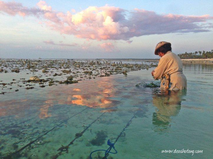Hal-Kecil-Membuatku-Cinta-Pulau-Rote (19)