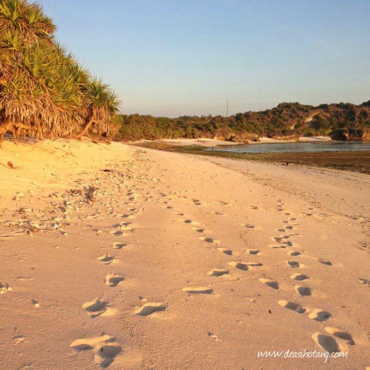 Hal-Kecil-Membuatku-Cinta-Pulau-Rote (7)