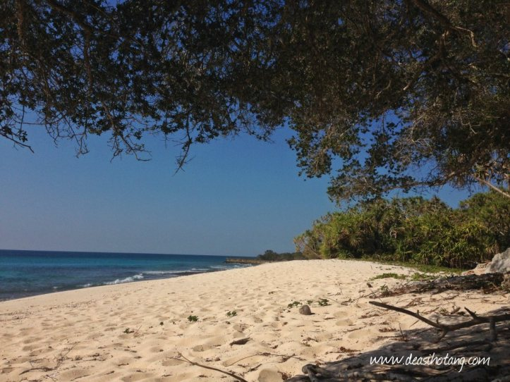 Things-You-Have-to-Know Before Visiting East Nusa Tenggara (10)
