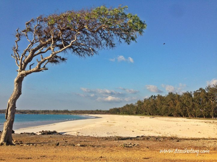 Things-You-Have-to-Know Before Visiting East Nusa Tenggara (13)
