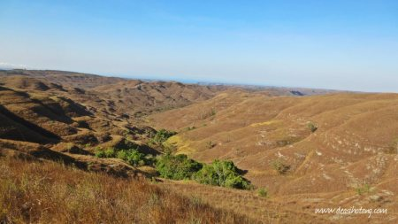 Things-You-Have-to-Know Before Visiting East Nusa Tenggara (16)