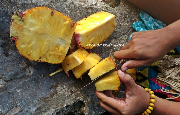 Things-You-Have-to-Know Before Visiting East Nusa Tenggara (21)