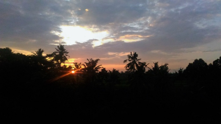 Beautiful sunrise almost everyday I had while staying in Ubud.