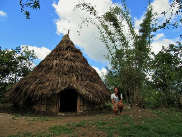 West Timor (6)